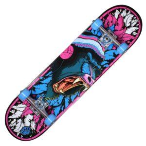 """Τροχοσανίδα Speed Demons Baboon Pink/Blue Comp. 7.75"""""""