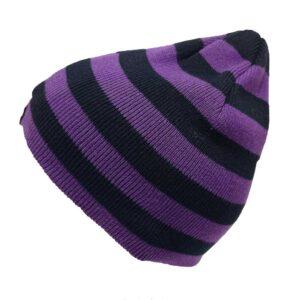 Dickies Beanie Yankton Purple-Black